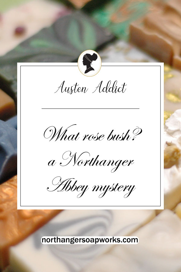 Mr. Tilney's Proposal is shrouded in mystery to one Catherine Morland. What rose bush can he possibly mean? Relating to the 1987 film adaptation, a bar of soap, and an unquenchable Austen addiction #janeausten