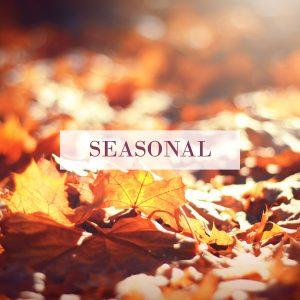 seasonal autumn products
