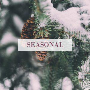 seasonal winter products