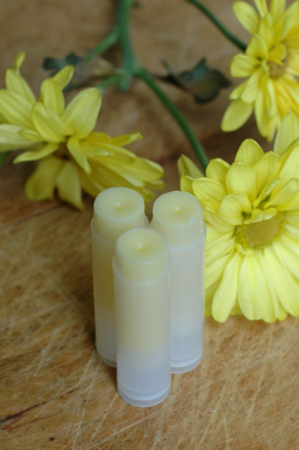 The Pinery lip balm is the flavor of pineapple. Inspired by the pinery in Northanger Abbey, by Jane Austen